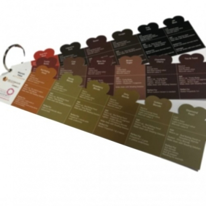 THE CLINICAL ACADEMY FITZPATRICK COLOUR RULERS